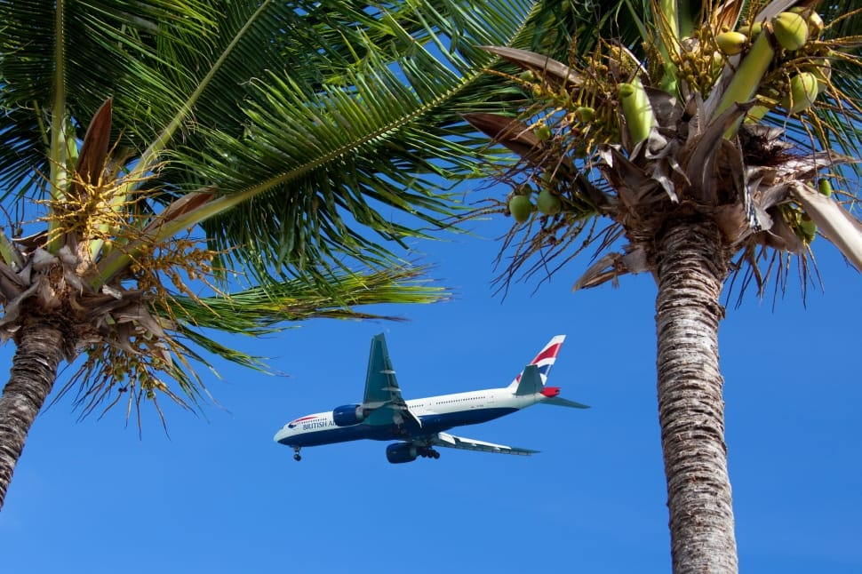 avion vacances